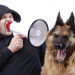 Is Aggressive Dog Training more Effective