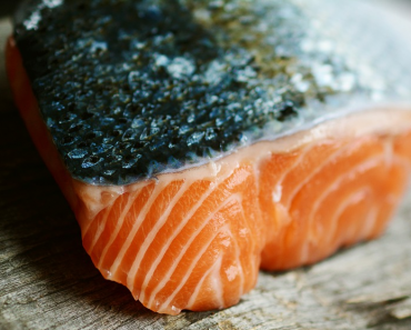 Can Dogs Eat Salmon and Is it Good or Bad for Them