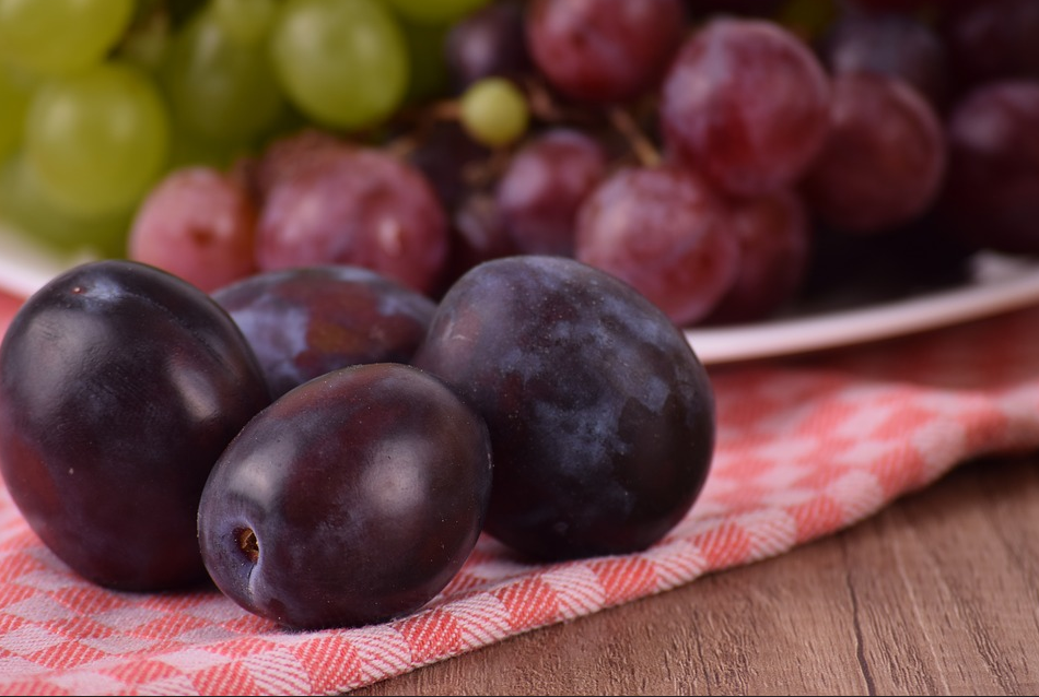 Can Dogs Eat Grapes Poisoning